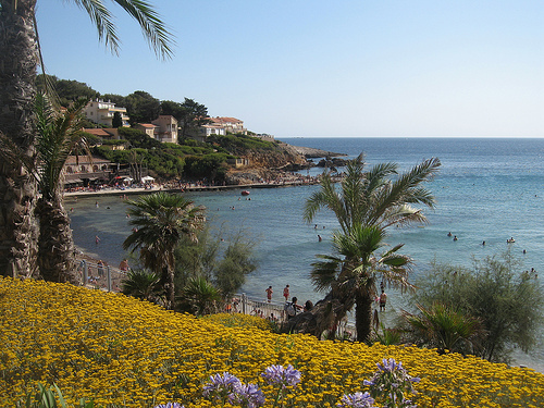 Bed breakfast sanary sur mer chambre d 39 h tes le figuier - Chambres d hotes sanary sur mer ...